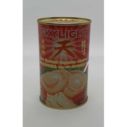 New Zealand Skylight Abalone 天亮鲍鱼